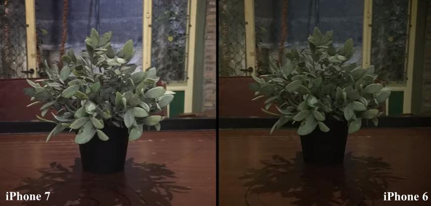 iphone 6 vs iphone 7 camera samples 2