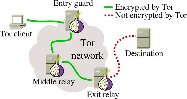 tor network explainer